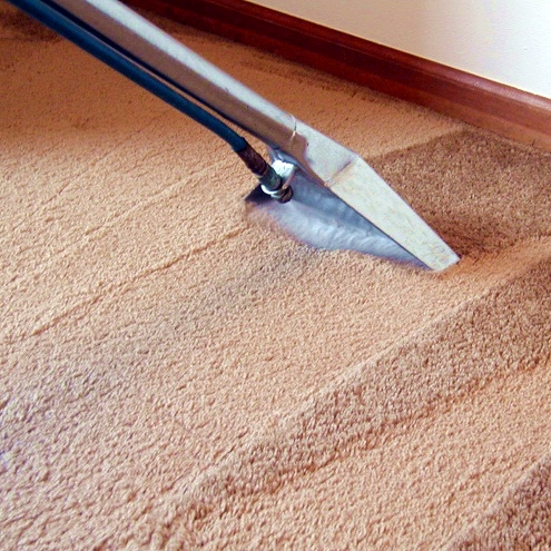 How-to-steam-clean-carpets